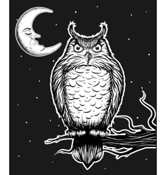 Owl is sitting on the tree vector image vector image