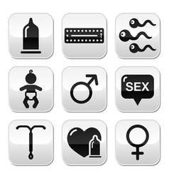 Contraception methods sex buttons sex vector image