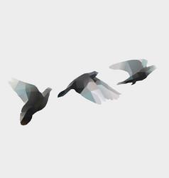 Birds fly on white vector