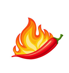 chilli peppers with fire vector image