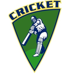 cricket sports batsman batting shield vector image