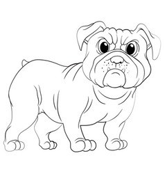 doodles drafting animal for pug dog vector image