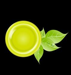 eco green leaf frame vector image