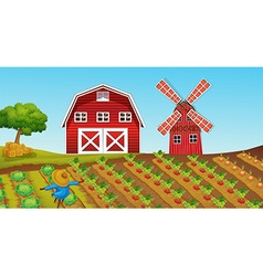 Farmland with crops on the farm vector image