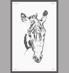 High detail hand drawn zebra s head sketch vector