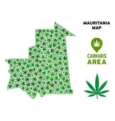 Marijuana collage mauritania map vector