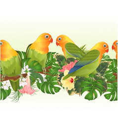 Tropical border seamless background parrots vector