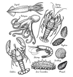 sea animals big set vector image