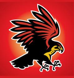 hawk bird mascot vector image vector image
