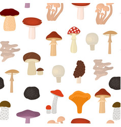 cartoon color poisonous and edible mushrooms vector image