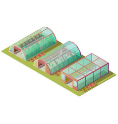 Isometric greenhouse farm buildings isolated icon vector