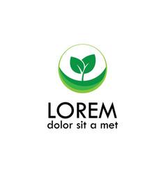 Leaf seed logo vector