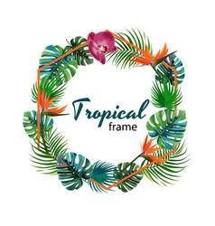 Tropical plants and flowers frame geometric shape vector