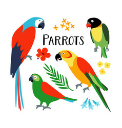 set of tropical parrots with palm leaf and vector image