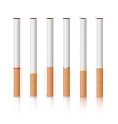 classic cigarettes set with yellow filters vector image
