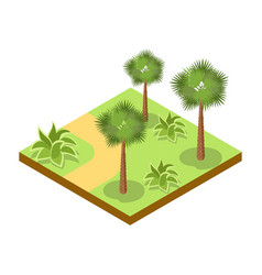Park alley with bushes and palm trees icon vector