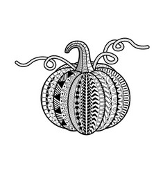 pumpkin coloring book vector image