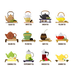 Tea green or black-tea in teapot vector