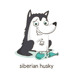 Siberian husky dog character isolated on white vector