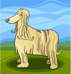 cartoon afghan hound dog vector image vector image