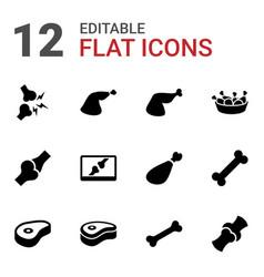 12 bone icons vector