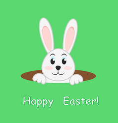 easter rabbit in hole on green background vector image