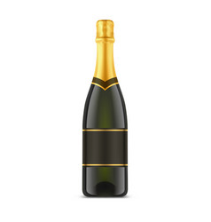 isolated champagne bottle or glassware container vector image