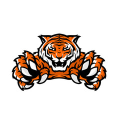 orange tiger sport gaming logo template with vector image