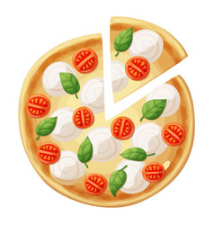 pizza top view cherry tomato mozzarella vector image