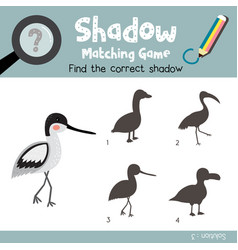 Shadow matching game avocet vector