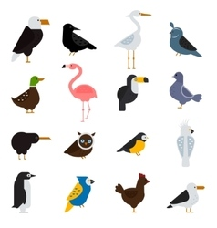 Birds set Eagle parrot vector image