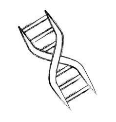 adn genetic code vector image