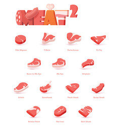 Beef meat cuts for steaks vector