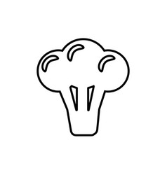 Broccoli line icon isolated cauliflower vector