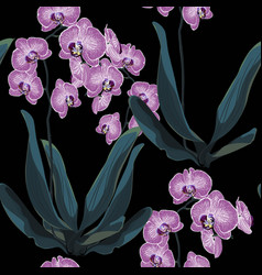 orchid tropical leaves and flowers vector image