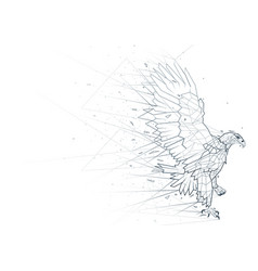 Abstract eagle low poly wireframe vector