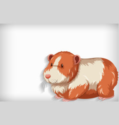 background template with plain color and hamster vector image