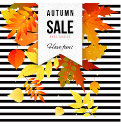 bright autumn sale striped poster vector image
