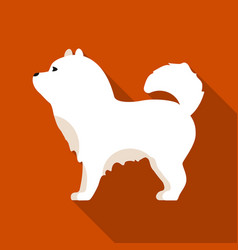 Chow-chow icon in flat style for web vector
