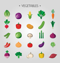 healthy green food organic diet vegetable vector image