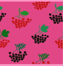 seamless pattern with rowan chokeberry and vector image