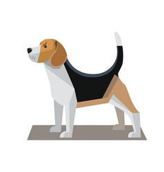 Beagle minimalist image vector