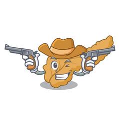 Cowboy pancreas character cartoon style vector