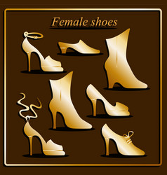 Different types of women shoes vector