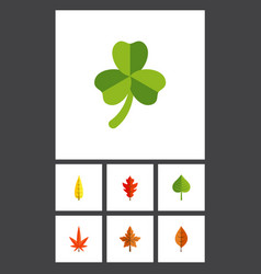 Flat icon maple set of alder foliage maple and vector