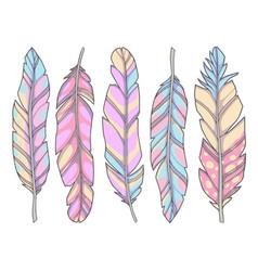 raibow feather mix vector image