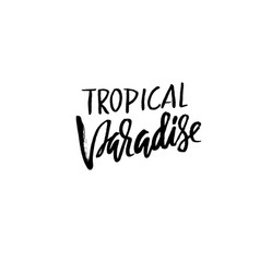 Tropical paradise hand drawn lettering isolated vector