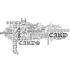 What you didn t know about credit card numbers vector
