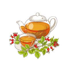 wild rose tea on white background vector image