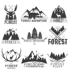 Set of forest theme emblems vintage badges vector